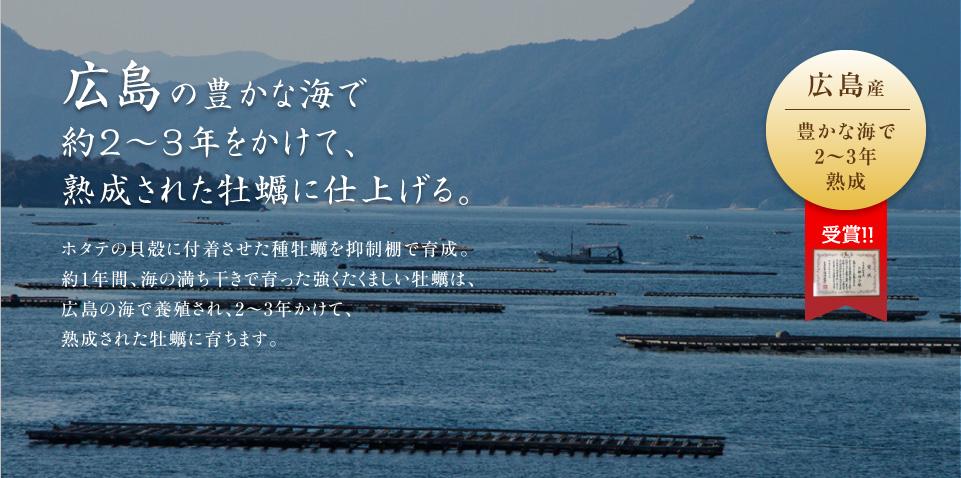 広島の豊かな海で約2〜3年をかけて、熟成された牡蠣に仕上げる。